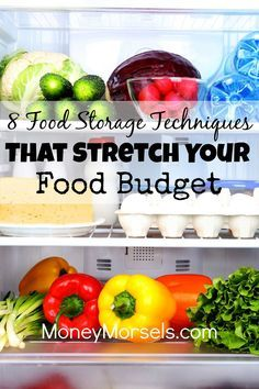 Proper food storage techniques can make food last longer and stretch your grocery budget.  sc 1 st  Pinterest & Proper food storage techniques can make food last longer and stretch ...