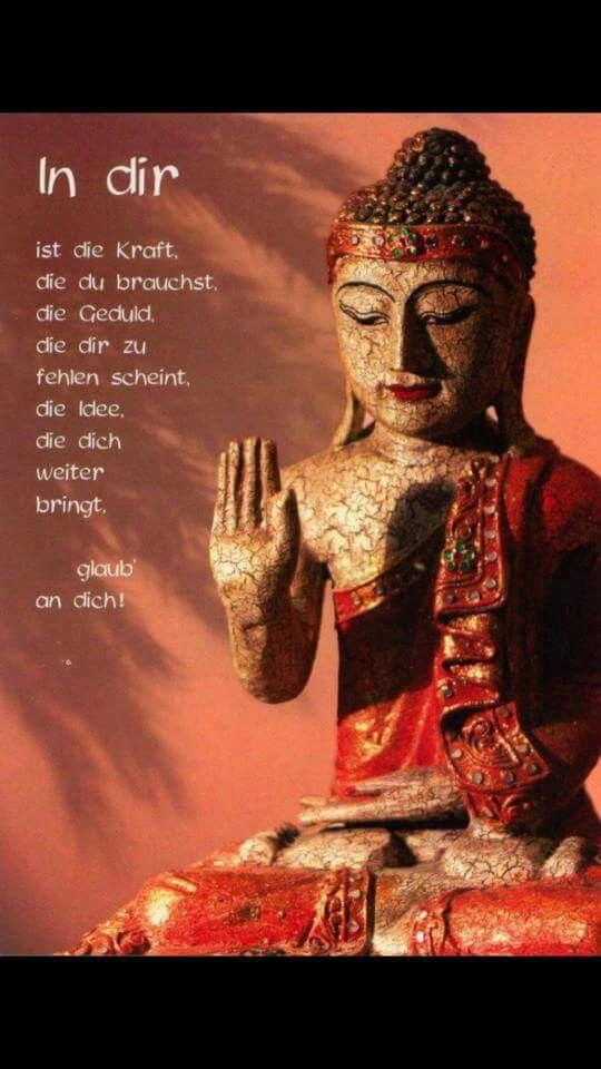 Buddha Weisheiten, Weisheiten Zitate, Yoga Sprüche, Sprüche Und Zitate, Sprüche  Zitate, Gute Sprüche, Sprüche Für Die Seele, Gedichte, Leben