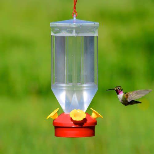 Perfect Home Depot Offers The Perky Pet 18 Oz. Lantern Hummingbird Feeder For $4.98