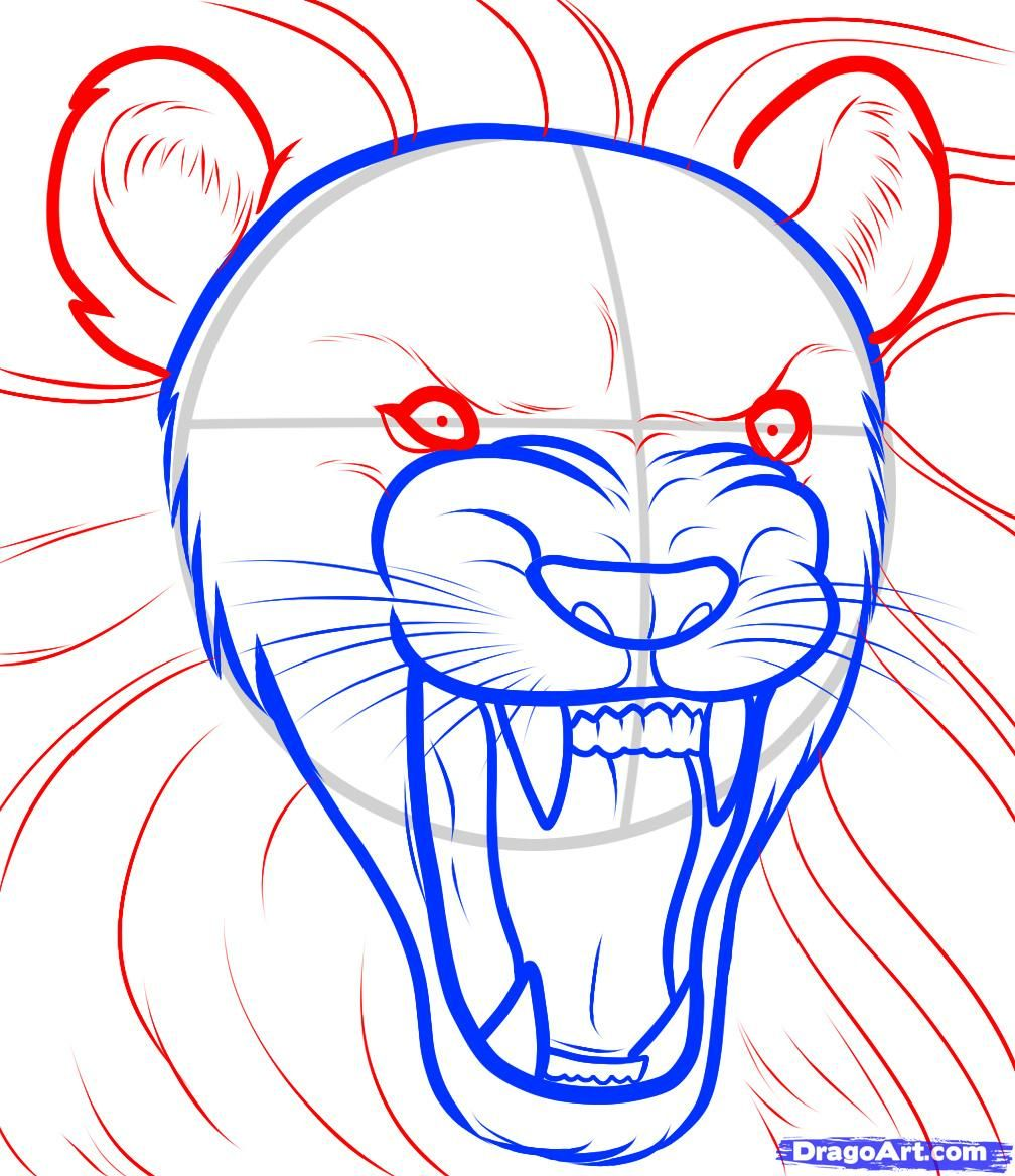how to draw a lion roaring roaring lion step by step safari
