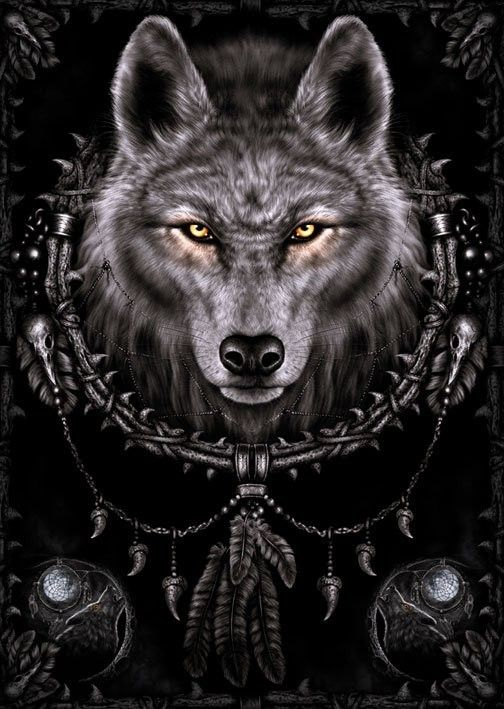Photo of Spiral – wolf dreams Poster, Plakat   3+1 GRATIS bei Europosters