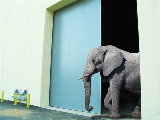 Elephant doors for when you need large sliding doors and sound proof technology #barndoor #hardware #specialty #custom explore barndoorhardware.com