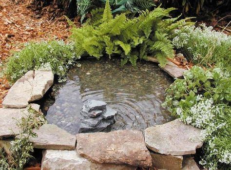 Miniteich Mortelkubel Im Garten Tarnen Pflanzenauswahl Springbrunnen Garten Brunnen Garten Gartenteich