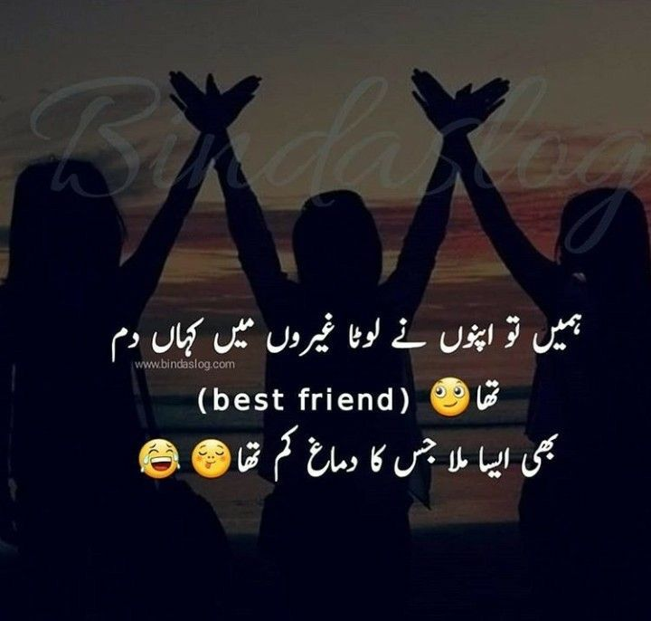 Pin By Wasaamashraf On Funny Quotes About Friends In 2020 Friendship Quotes Funny Funny Quotes In Urdu Friends Quotes Funny