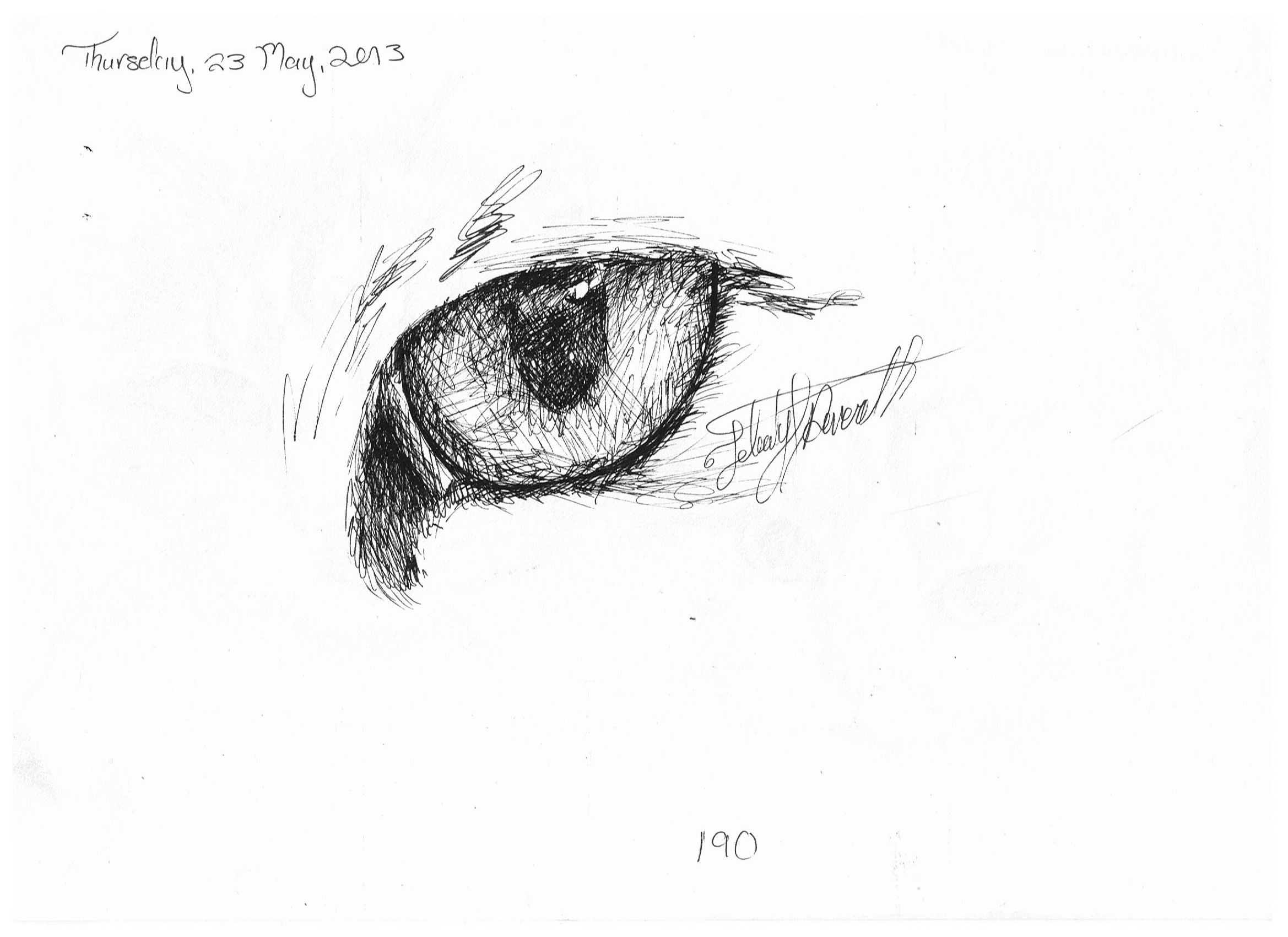 Line Drawing Eye : Cat eye pen drawing by felicity deverell things i love