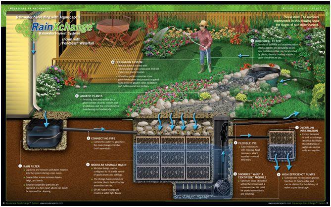 Rainwater Rainwater Harvesting Rainwater Collection Rainwater