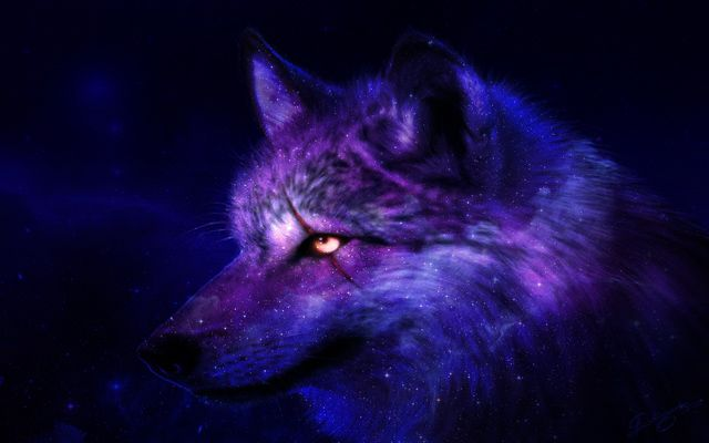 Galaxy Wolf Galaxy Animals Galaxy Wolf Wolf Double