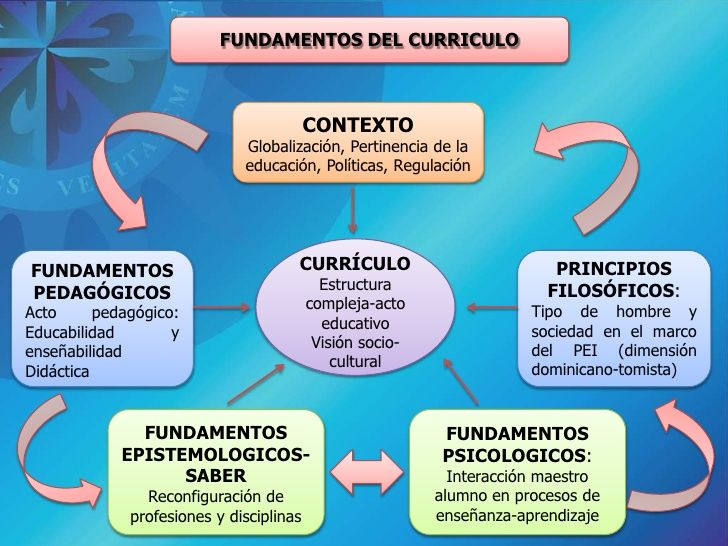 Principios Del Curriculo Dominicano Buscar Con Google