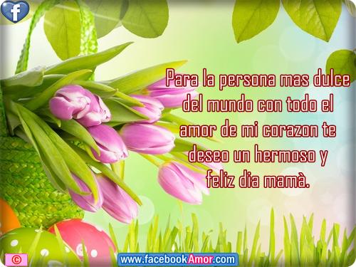 Frases Para Mama: Imagenes-flores-con-frases-para-mama.png (500×375)