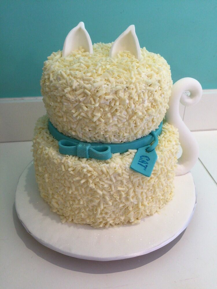The most bra cake ever made! Special treat bakery made this amazing cat cake for Cat!
