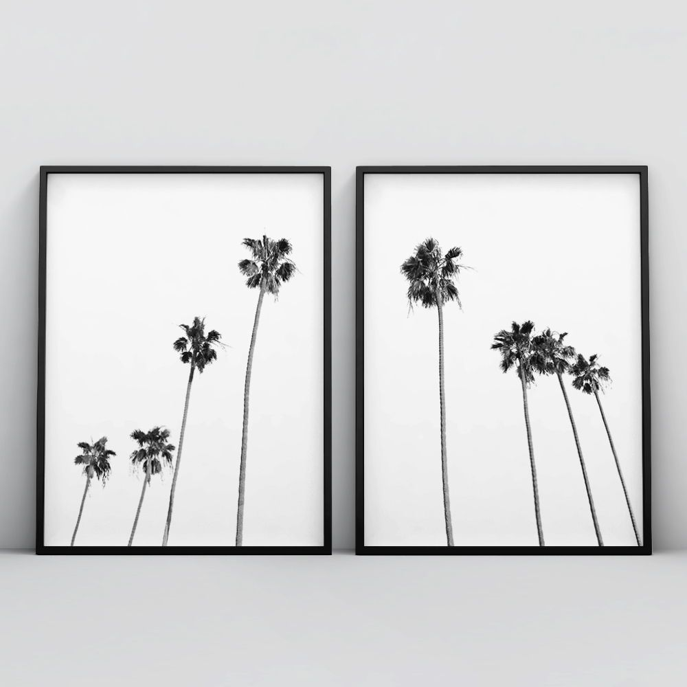 Palm Tree Home Decor Palm In The Sunlight Poster Art Print