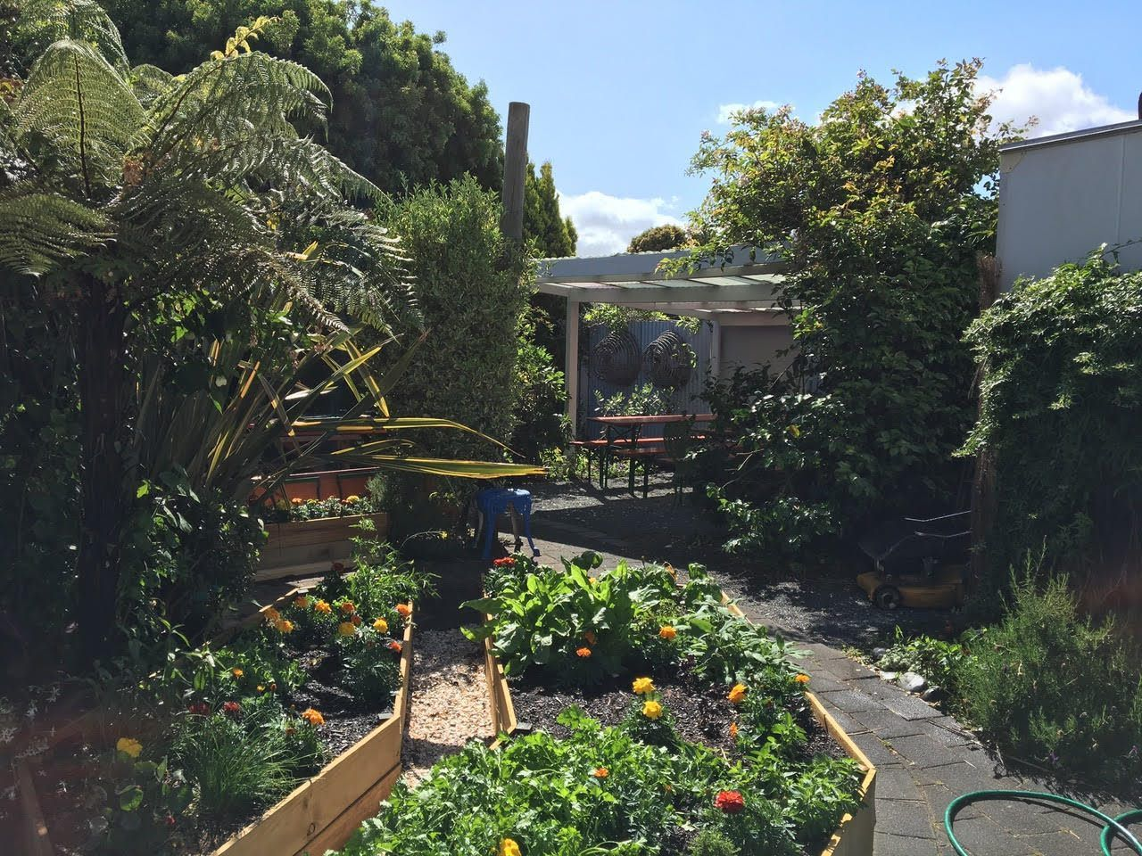 Exciting Mt Maunganui Kitchen Opportunity