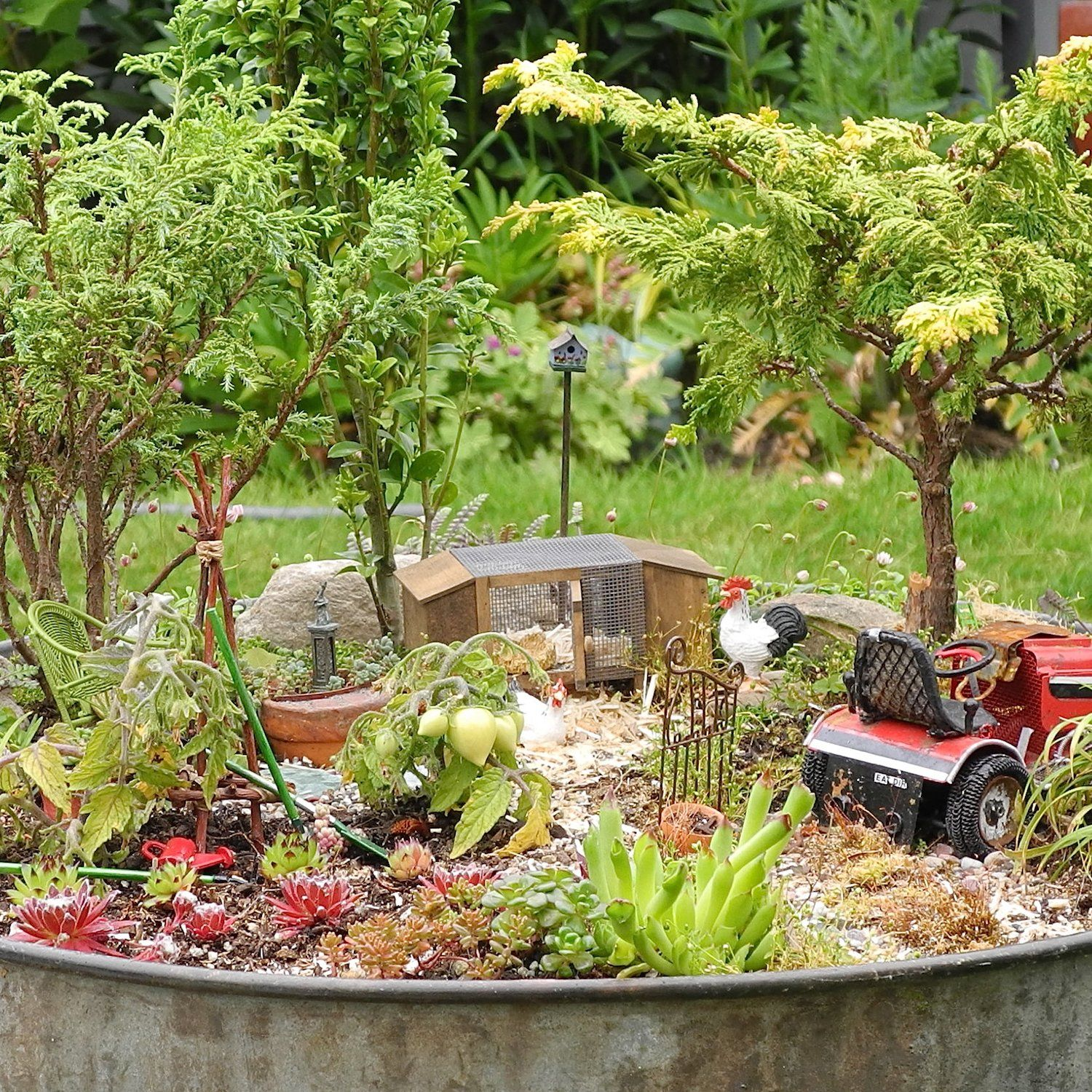 Photos For Best Rate Landscape Design: Gardening In Miniature Book, The Primer For The Hobby