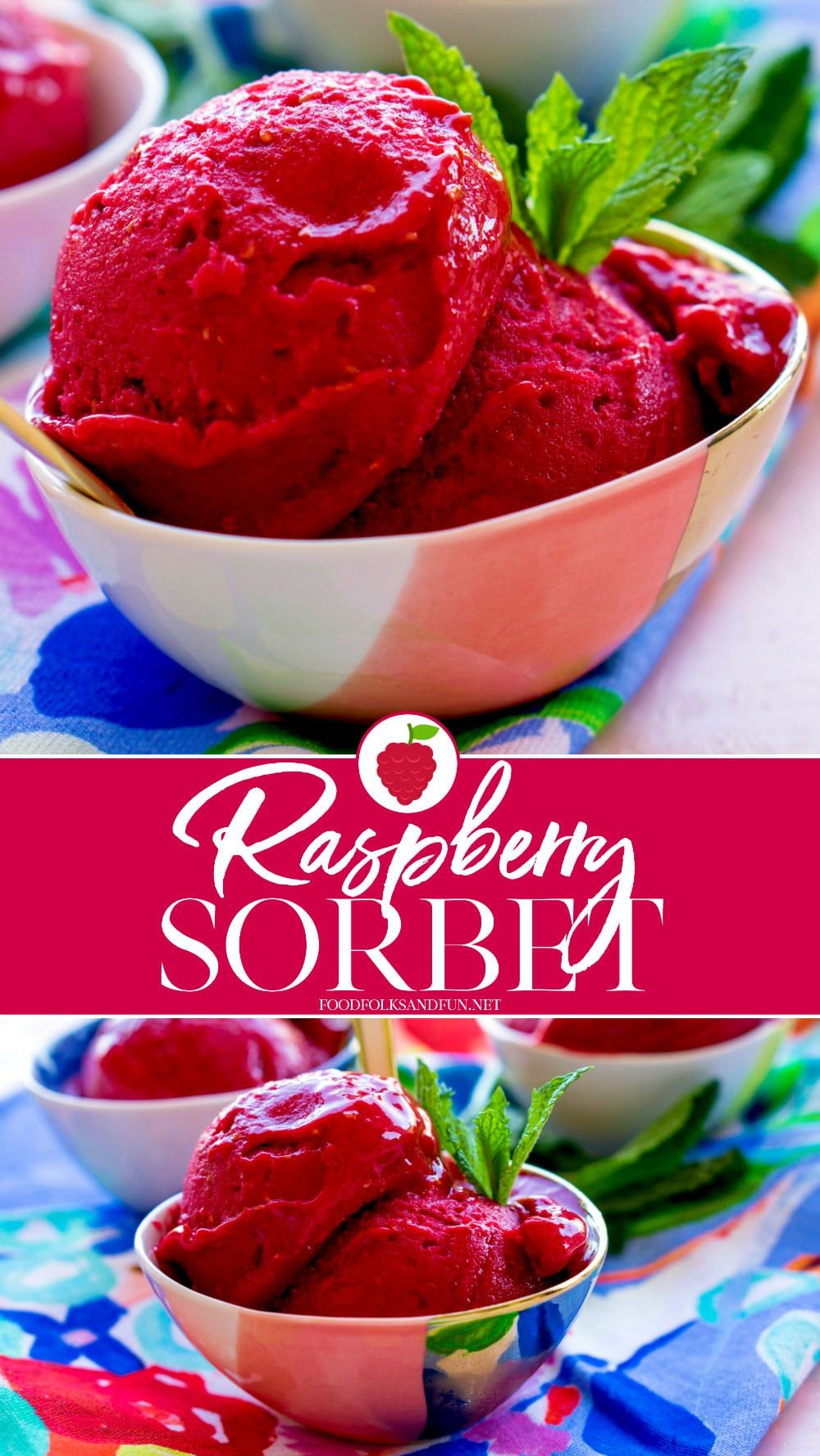 Homemade Raspberry Sorbet Is Only Minutes Away  All You