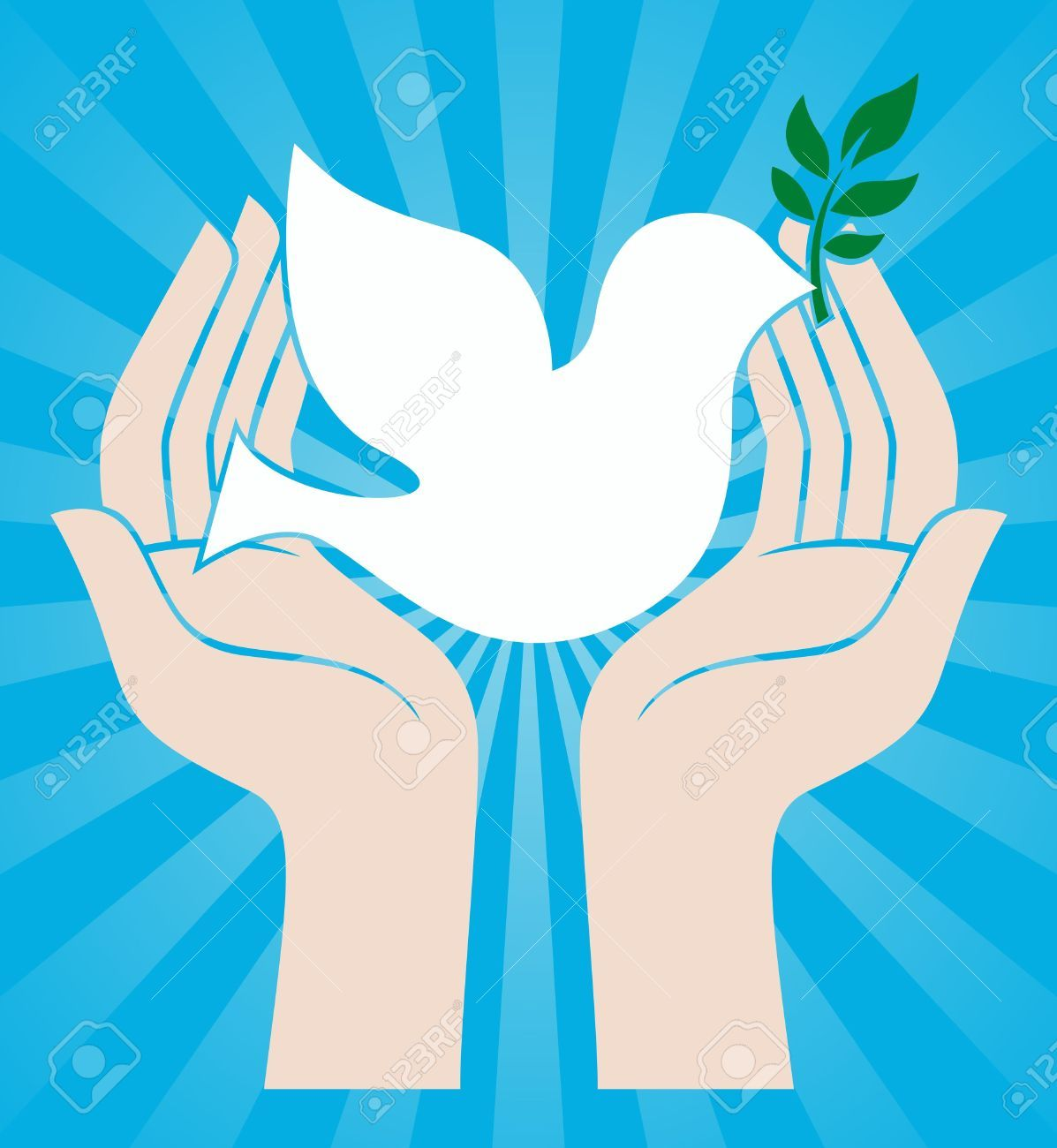 Dove peace symbol holding an olive branch royalty free cliparts dove peace symbol holding an olive branch royalty free cliparts buycottarizona