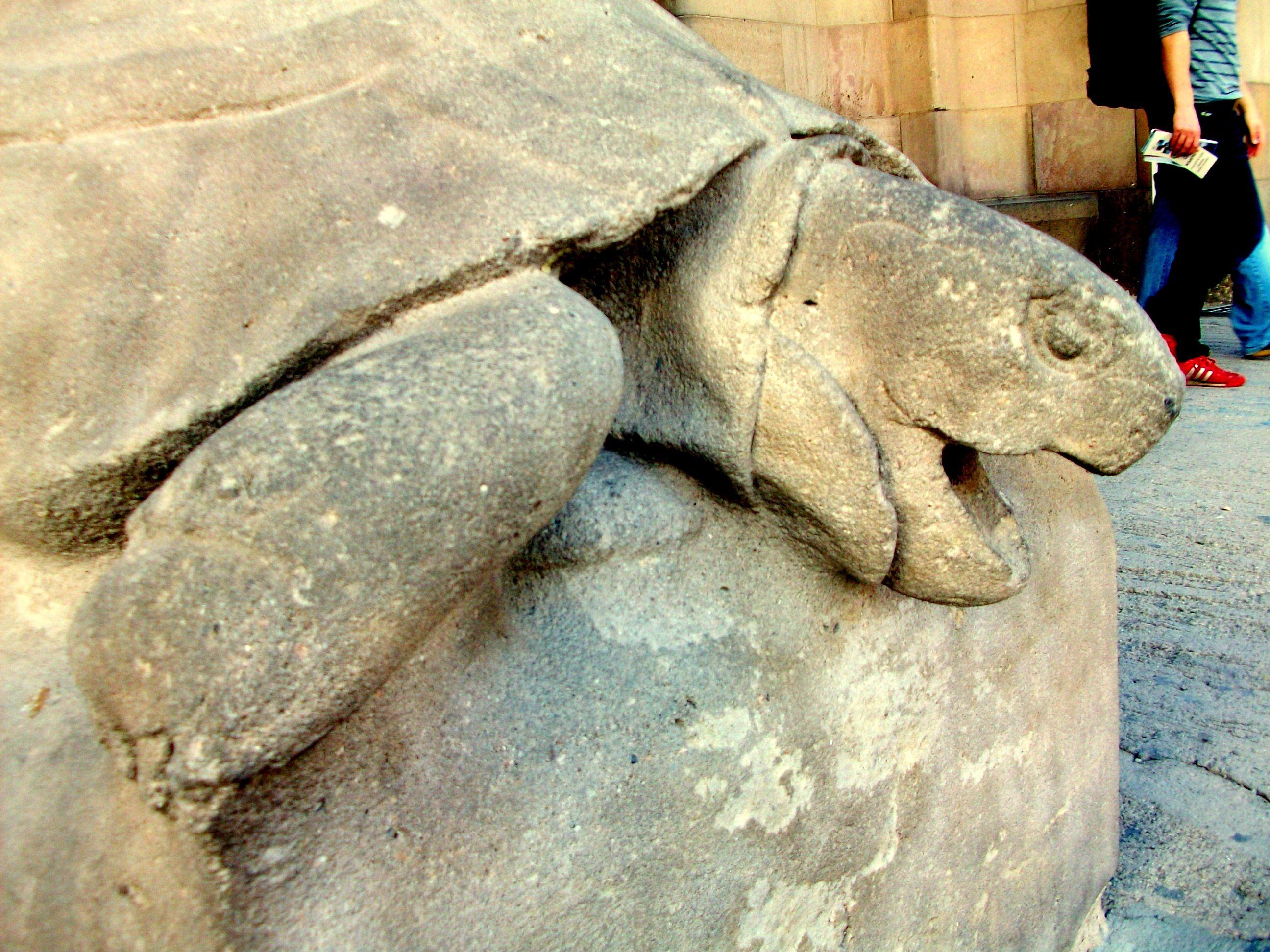 Antonio Gaudi Turtle From Sagrada Familia Church Barcelona Gaudi Sagrada Familia Antoni Gaudi