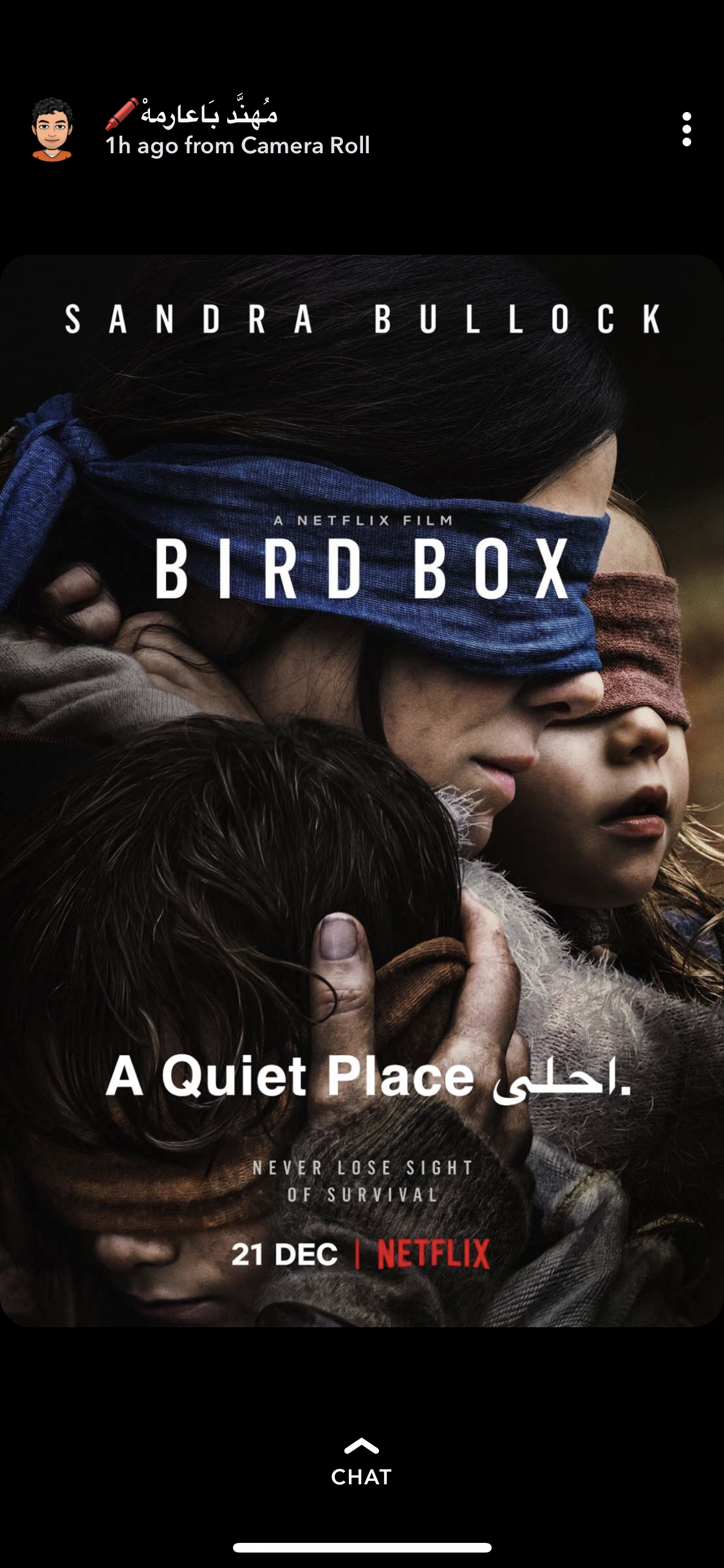 Pin by iefaax on افلام ومسلسلات Film, Netflix, Bird boxes