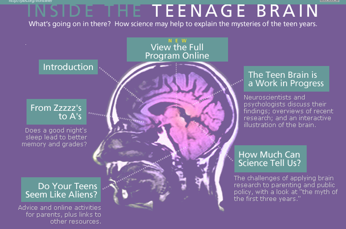 The Adolescent Brain Why Executive >> Teenage Brain Teen Brain Teenage Brain Brain School Psychology