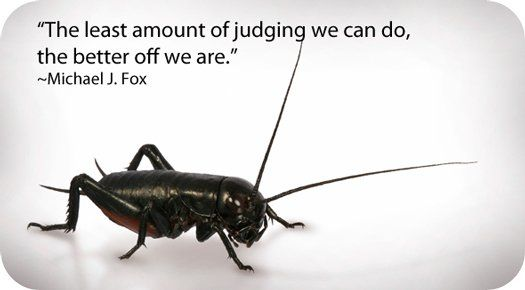 Symbolic Meaning Of Crickets Symbols Meant To Be Cricket