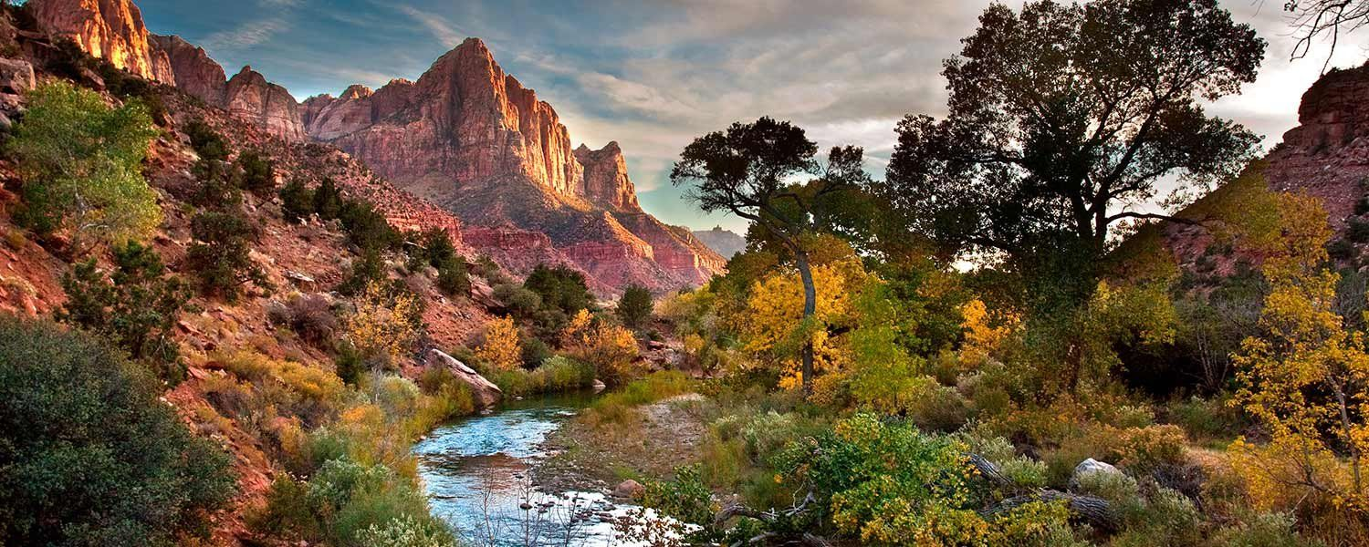 Things To Do in Zion National Park Springdale Utah