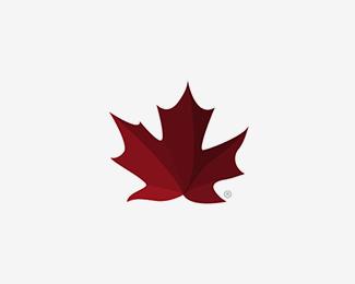 Mapple Leaf By Miguelbasurto Maple Leaf Tattoo Canada Tattoo Maple Leaf Logo