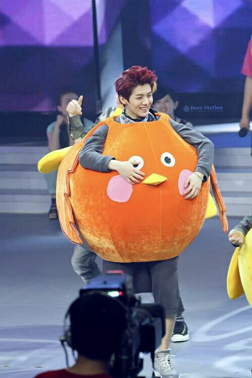 Luhan in Happy Camp