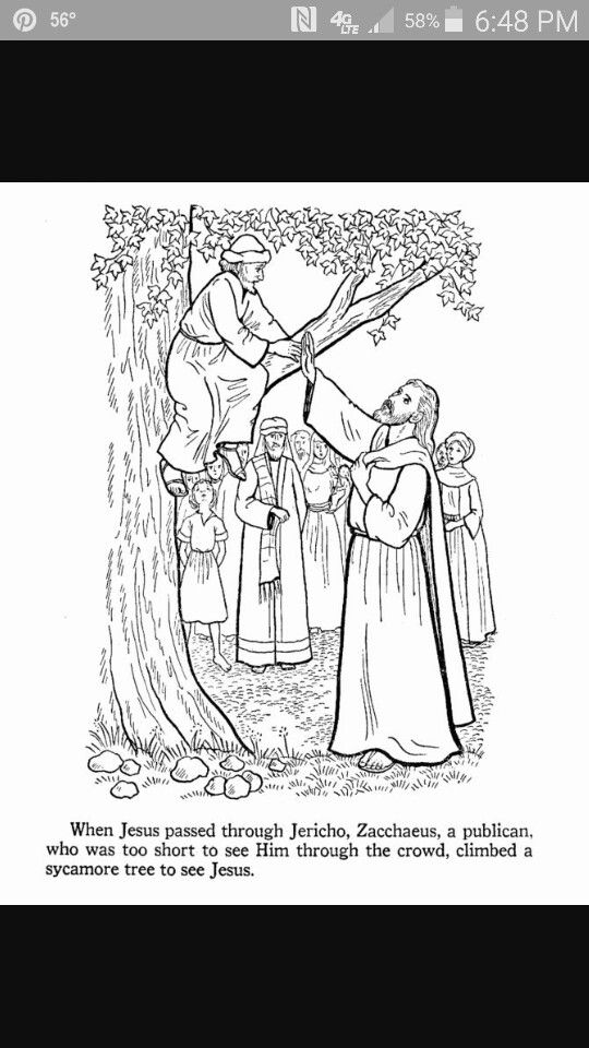 Luke 19 5 Sunday School Coloring Pages Zacchaeus Bible