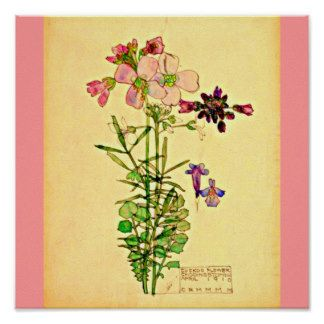Mackintosh Gifts - Mackintosh Gift Ideas on Zazzle