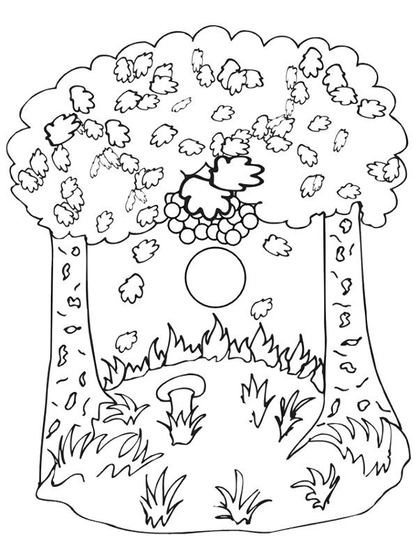 37 coloring pages of Autumn on Kids-n-Funuk On Kids-n-Fun you - best of fun coloring pages for fall