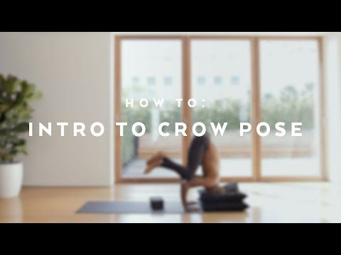 127 how to intro to crow pose with andrew sealy