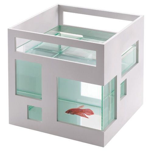 For Katie...Apartment for your fish