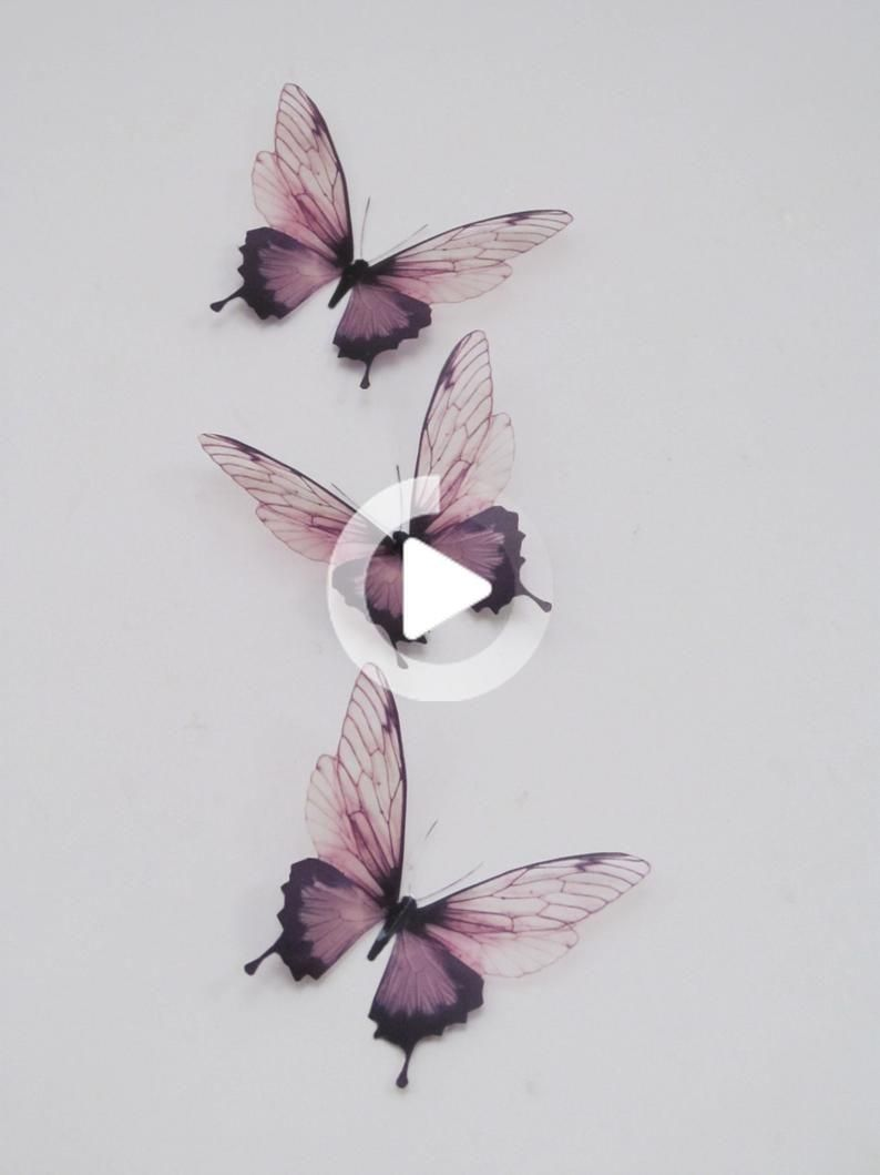 3 Luxury Amazing In Flight Butterflies 3d Butterfly Wall Butterflytattoos Tattooideas In 2020 3d Butterfly Wall Art Butterfly Wall Art Butterfly Tattoo