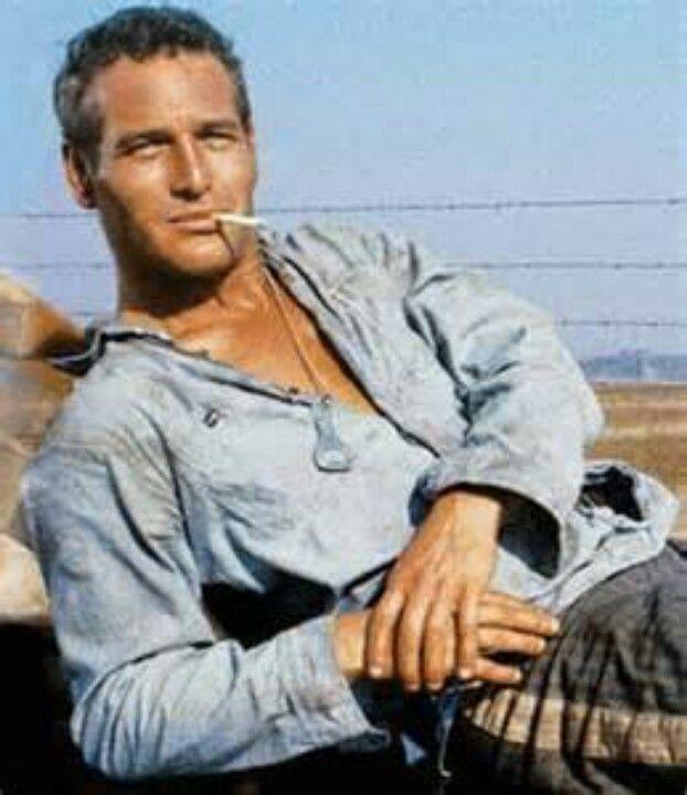 Cool Hand Luke! Paul Newman.