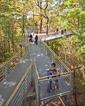 The Morris Arboretum Of The University Of Pennsylvania