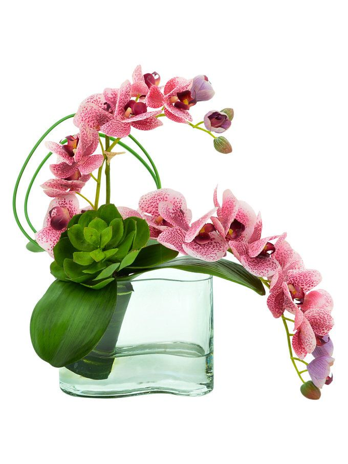 Pink Orchid Floral Arrangement from Creative Displays ...