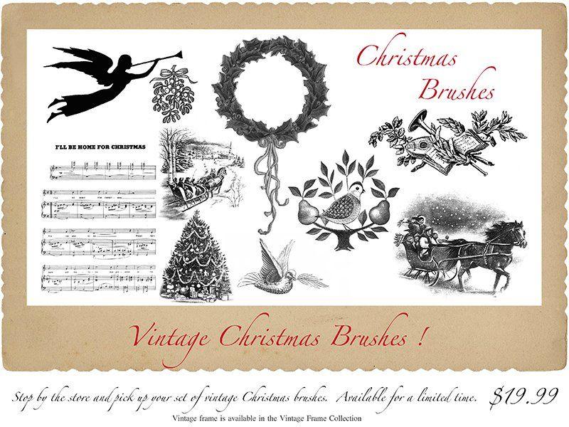 Christmas Brushes - Belle Fluer Textures & Botanicals