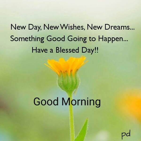 Good Morning Wishes Good Morning Quotes Happy Good Morning Quotes Morning Quotes