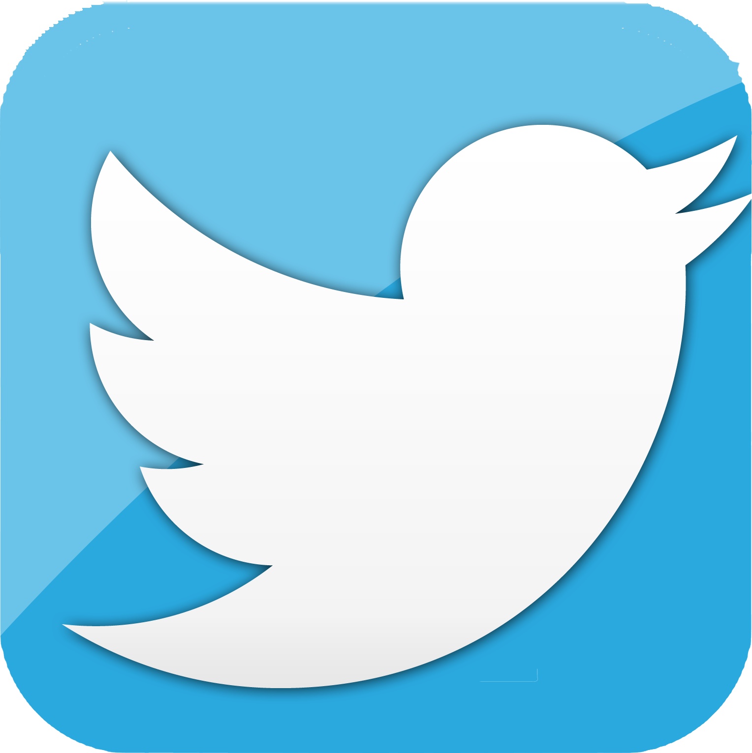 twitter icon for website