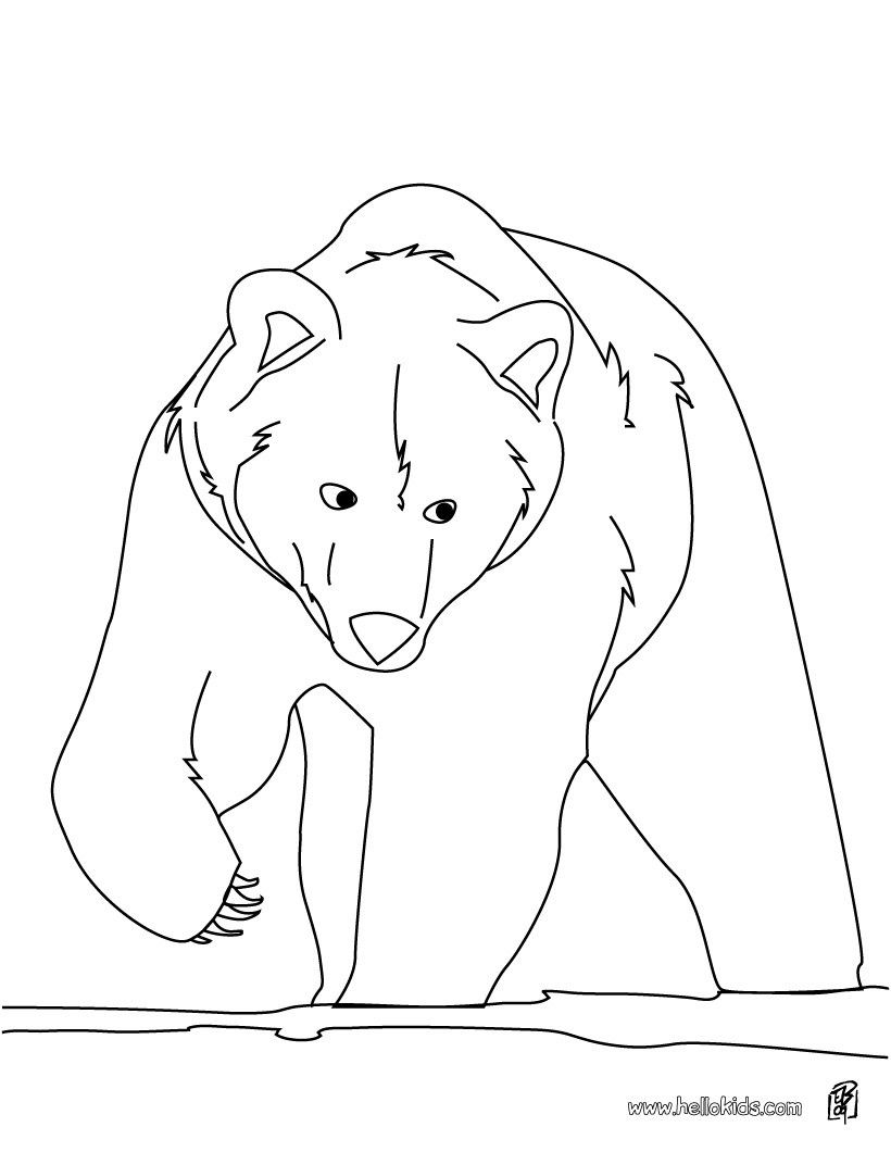 Brown bear coloring page. More Forest Animals coloring sheets on ...