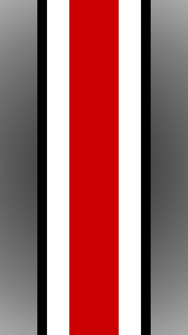 Ohio State Colors Paint #4
