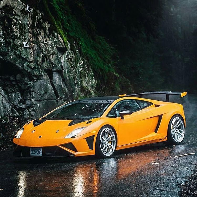 Lamborghini Sport: Lamborghini Cars, Lamborghini Gallardo