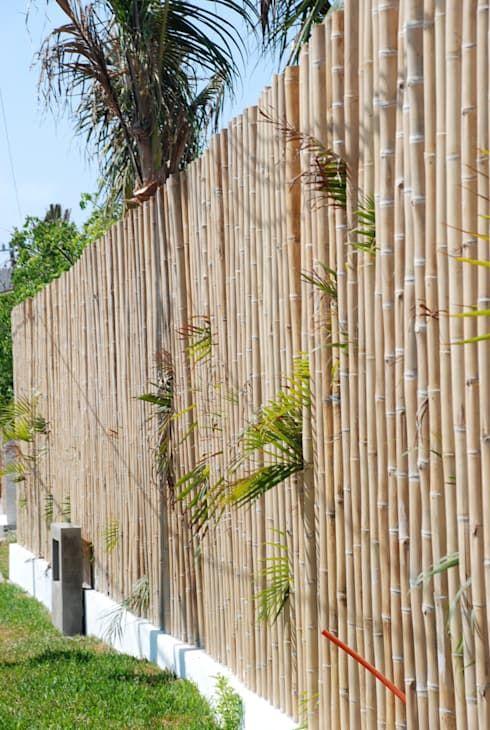 Cerco De Bambu Precios Y Perfecto Para Todo Tamano De Patios O Terraza Zama Restaurantes De Estilo Por Vgzarquitect Cerca De Bambu Bambu Decoracion Con Bambu