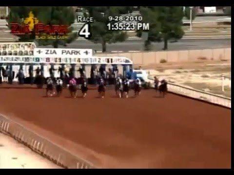 Pin By Stallionmexsearch On Videos De Carreras De Caballos