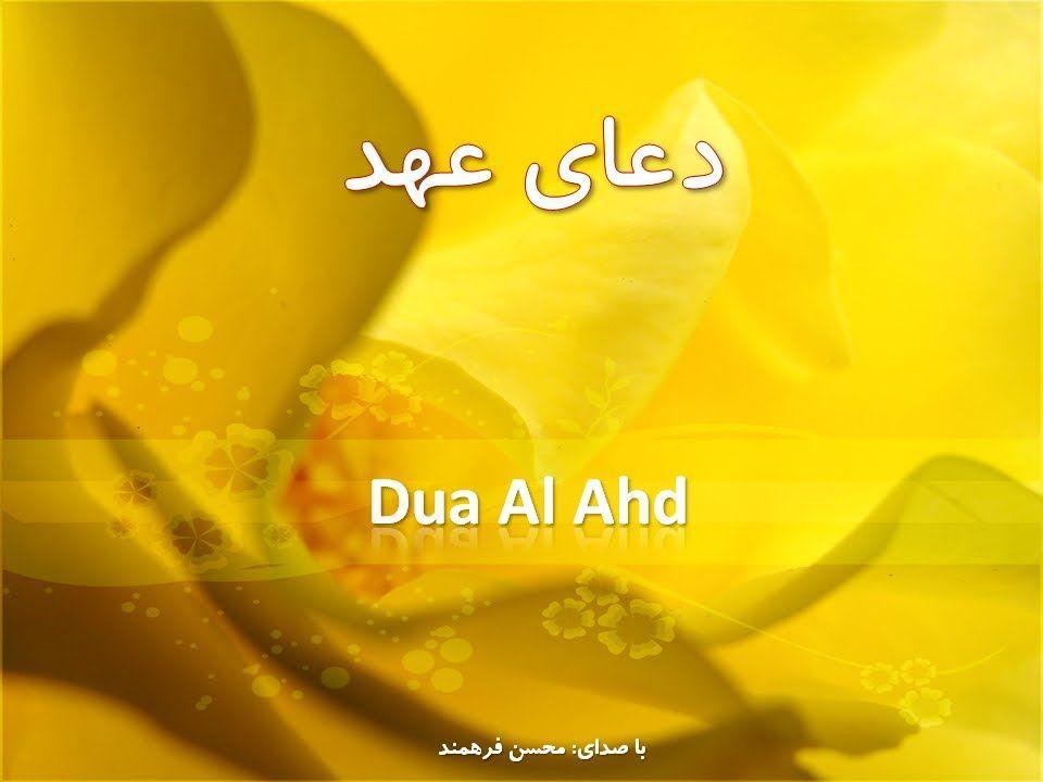 Dua Ahd (Ahad) دعای عهد   Prayers - English & Arabic Islamic