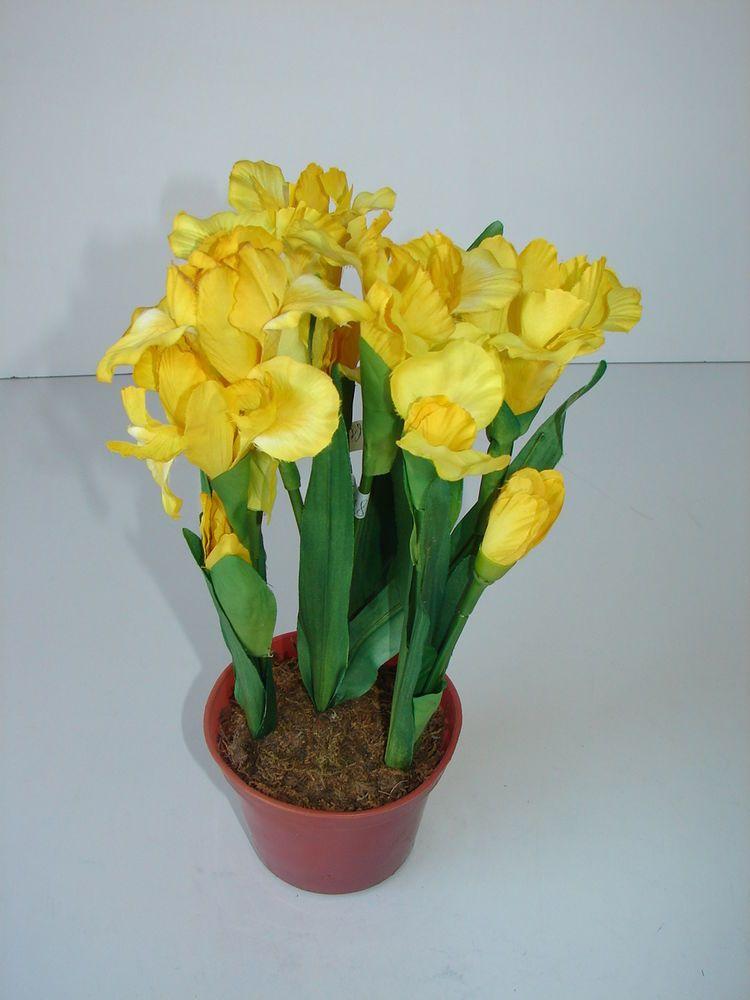 kunstblumen iris gelb blumentopf blumen pflanzen neu in ovp gelbe iris im topf - Blumen Im Topf Pflanzen