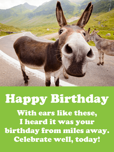 I Heard It S Your Birthday Funny Birthday Card Birthday Greeting Cards By Davia Birthday Humor Birthday Greetings Funny Funny Birthday Cards