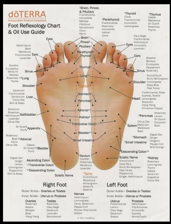 Foot Reflexology Chart Oil Use Guide By My Oil Business By Asmodel Reflexology Essential Oils Essential Oils Reflexology Foot Chart