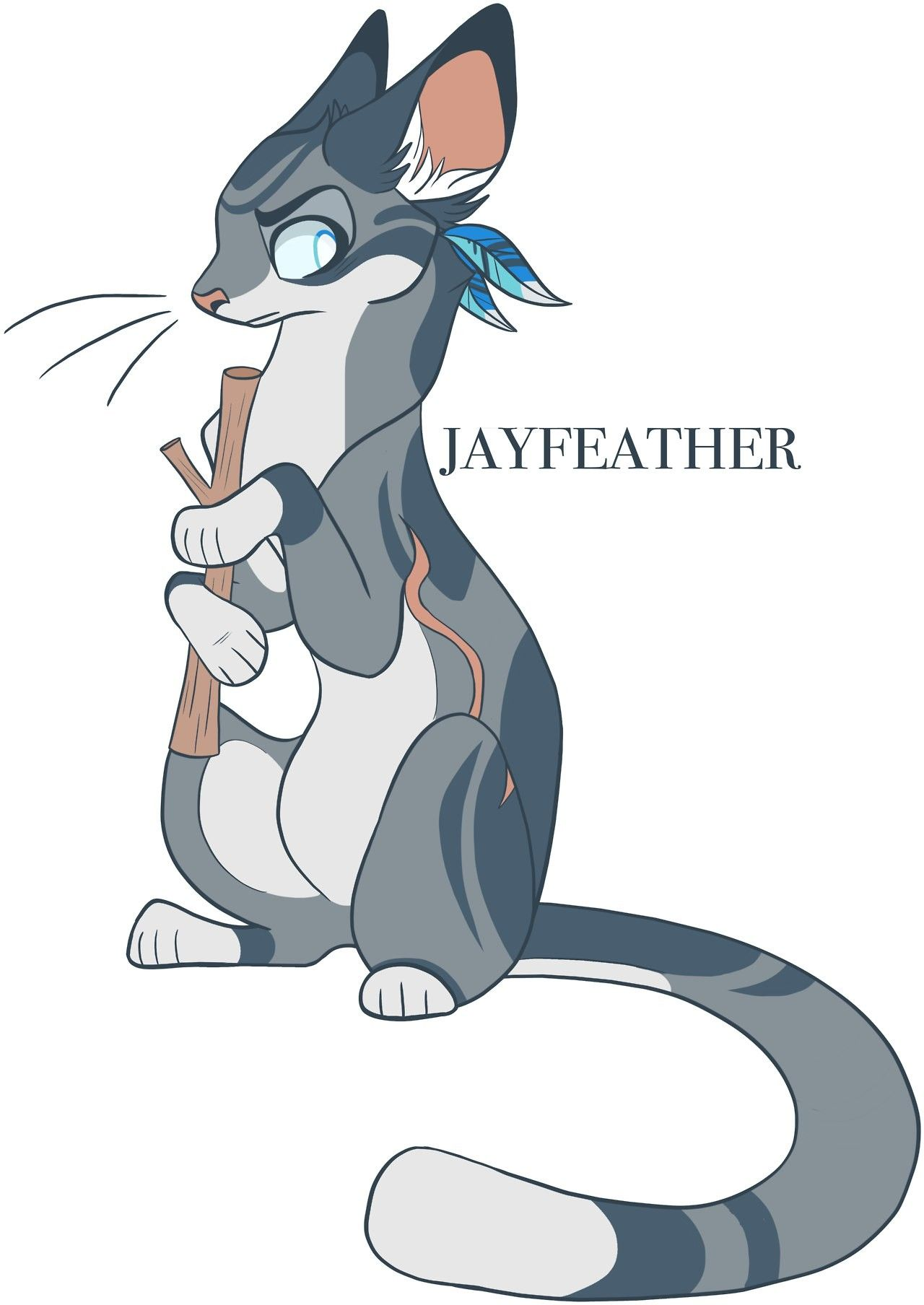 This Is My Stick Jayfeather With Images Warrior Cats Fan