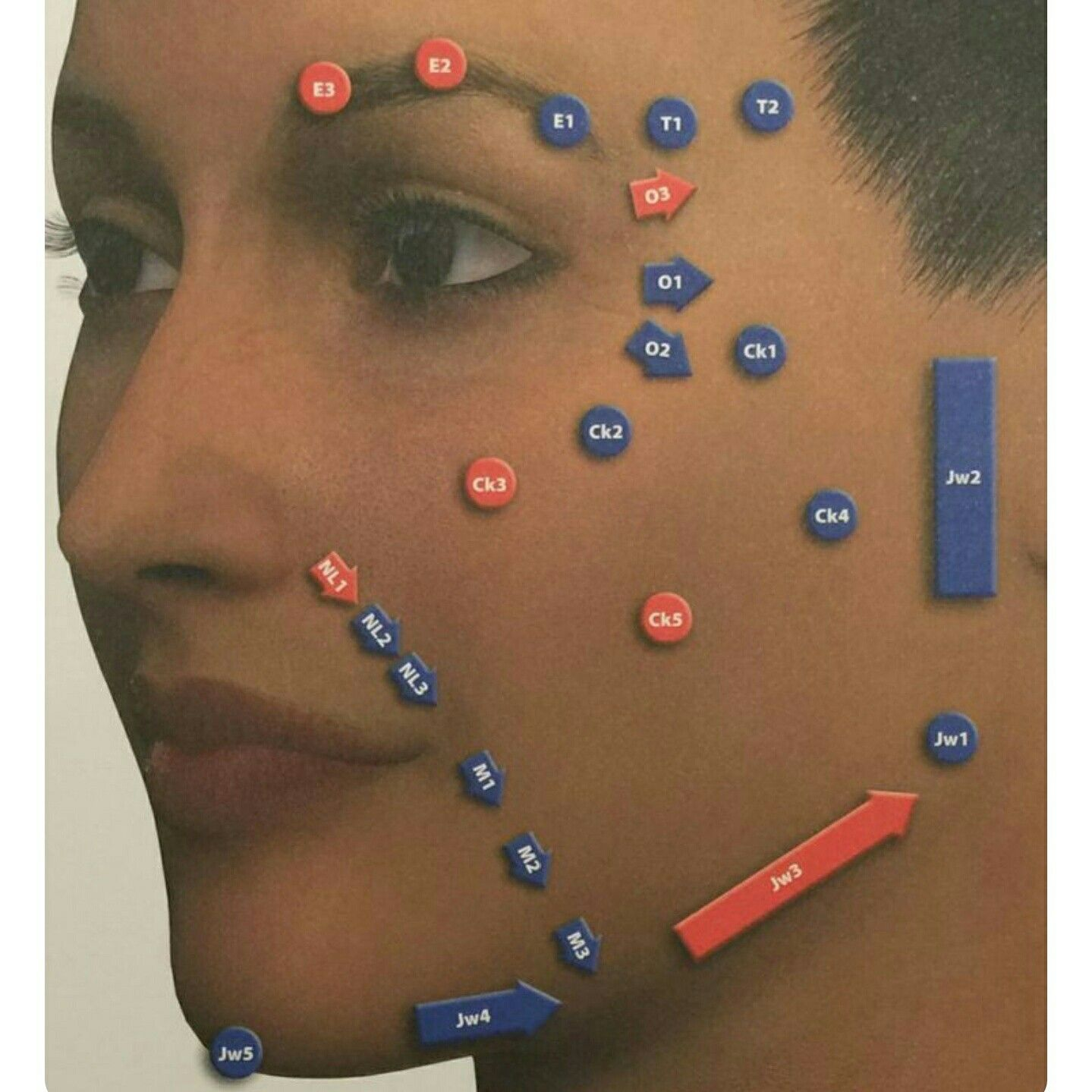 Pin by Cheryl Langdon on Lip Shapes (With images) Facial