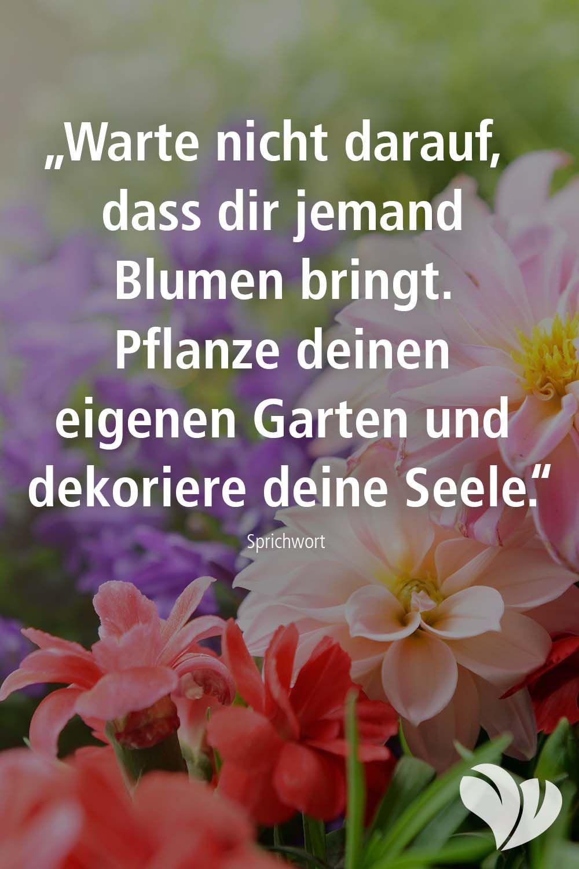 Garten Zitat Garten Garten Zitate Pflanzen Gartenspruche